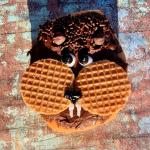 Groundhog Doughnut